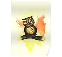 Cute owl. Poster