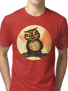 Cute owl. Tri-blend T-Shirt