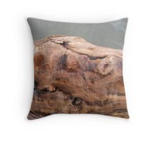 Momma Bear Throw Pillow