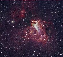 M17 The Swan Nebula by astrochuck