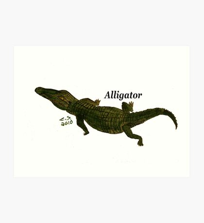 """Aligator""  by Carter L. Shepard Art Print"