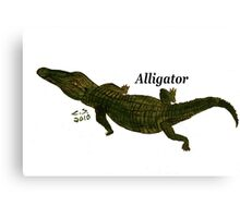 """Aligator""  by Carter L. Shepard Canvas Print"