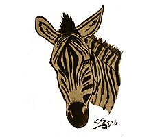 """Zebra""  by Carter L. Shepard Photographic Print"