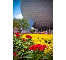 Springtime In EPCOT Photographic Print