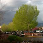 Rainy day in Santa Fe NM by NovaCynthia