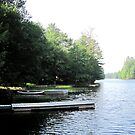 Serene Little Long Lake 2012 by Patricia127