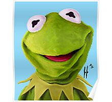 Mr. the Frog Poster