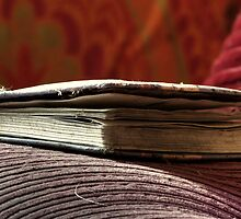 27.7.2012: Old, Abandoned Book by Petri Volanen