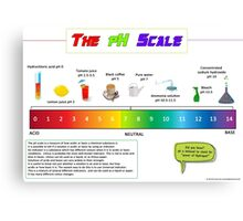 The pH Scale poster Canvas Print
