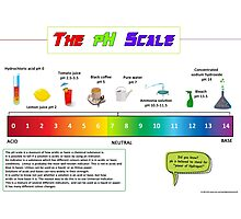 The pH Scale  Photographic Print