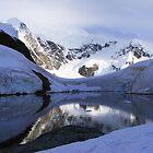 Antarctic Bay of Paradise  by Rob Goforth
