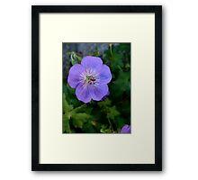 Purple Macro Framed Print