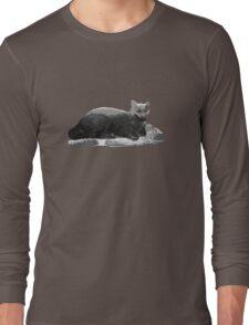 Keyboard Cat Long Sleeve T-Shirt