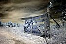 The Farm Gate - Dunrobin Ontario by Debbie Pinard