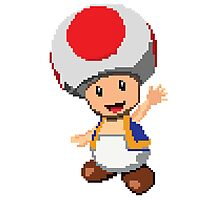 Pixel Toad Photographic Print
