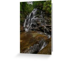 Valley of the Waters. Greeting Card