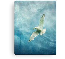 Summer Squall Canvas Print