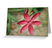 Blossoming Star Greeting Card