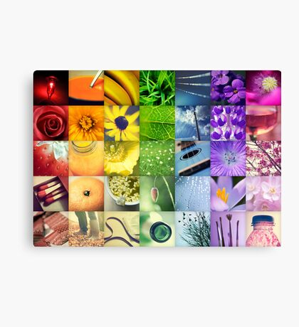 A Year of Colour Canvas Print