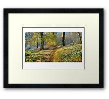 Lickey Hills Framed Print