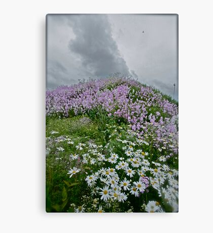 Landscape and Floral Pastel Paintings . Norway .Nordland . june 2012. by Andy Brown Sugar. Featured in Eastern European Art. Thx! Canvas Print