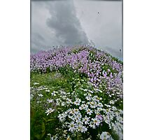 Landscape and Floral Pastel Paintings . Norway .Nordland . june 2012. by Andy Brown Sugar. Featured in Eastern European Art. Thx! Photographic Print