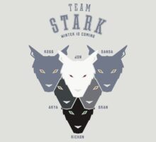 House Stark Sports Tee by liquidsouldes