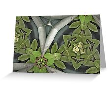 Prismatic Foliage 33 Greeting Card