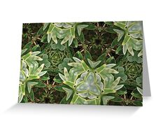 Prismatic Foliage 39 Greeting Card