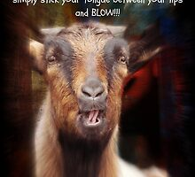 BLOW IT! by Donna Keevers Driver
