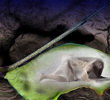 Isn't she larva-ly by David Kessler
