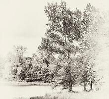 Summer Lake Memories by KBritt