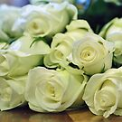 Bouquet of Cream Roses by Astrid Ewing Photography