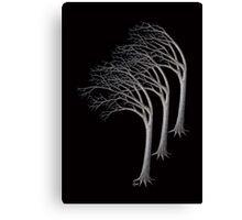 Bent Trees Canvas Print
