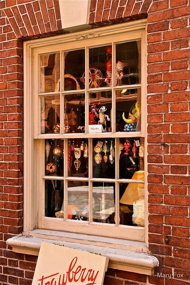 Window Shopping by Mary Fox
