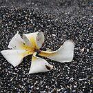 Black Sand Plumeria by KimSha