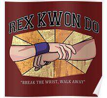 Rex Kwon Do Poster