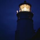 Heceta Head Lighthouse at Night by jschwab