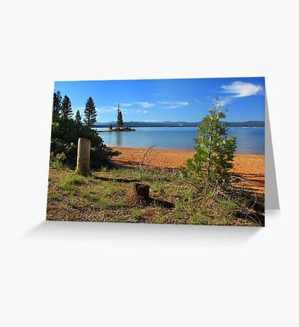 Pine Trees In Lake Almanor Greeting Card
