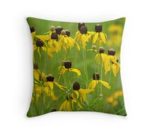 Prairie Coneflowers Throw Pillow