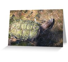 Impressionistic Snapping Turtle Greeting Card