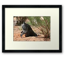 The Overachiever Framed Print