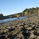 Trinidad Beach California by KimSha