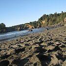 Trinidad Beach California by KimSha