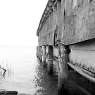 Abandon Crab Shack - Saxis, VA by searchlight