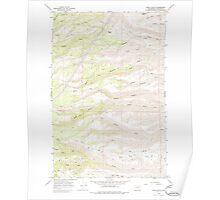 USGS Topo Map Washington State WA Stray Gulch 244075 1966 24000 Poster