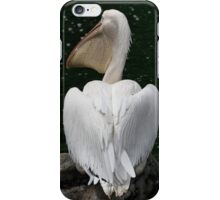 Great White Pelican iPhone Case/Skin