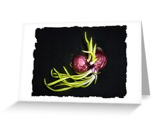 Wrapped in each other - Red Onions Greeting Card
