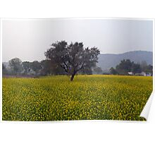 A field of mustard with a tree and mountains in the background Poster