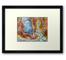 Trunk To Trunk Framed Print